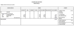 Éditions analytiques : compte de section
